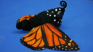 Monarch caterpillar/chrysalis/butterfly puppet